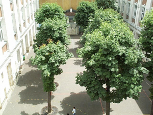 The yard of the Ecole St Sebastien.  Miracle of modern technology: I was able to find on Google images this photo of the yard (cour) just the way I remember it in early spring.