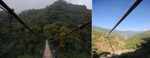 Suspension bridges in Central Taiwan, just as flimsy and dangerous as I remember it.