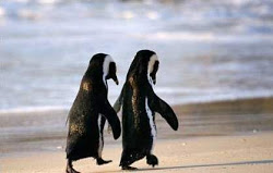 "Probably only penguins of the same sex can walk hand in hand today without anyone assuming anything other than ""What good friends they are!"""
